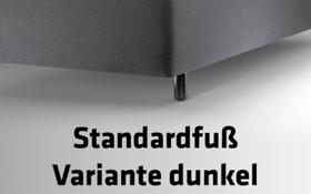 Füße_1_Standardfuß_Variante_dunkel_Text_400x250px