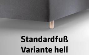 Füße_2_Standardfuß_Variante_hell_Text_400x250px